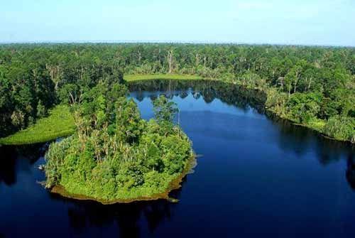 Ini 5 Pulau di Indonesia yang Terancam akan Tenggelam, Apakah Pulau di Riau Termasuk di Dalamnya?