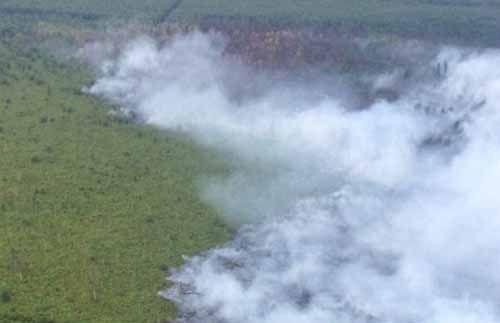 Gawat! Sinyal Bencana Asap Mengancam Lagi, BMKG Deteksi 10 Titik Panas di Riau
