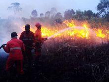 curah-hujan-indonesia-masih-tinggi-indragiri-hulu-dilanda-kebakaran-hutan-dan-lahan