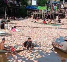 kapal-sembako-tenggelam-di-sungai-siak-pekanbaru-ribuan-mi-instan-dan-roti-mengapung-warga-seakan