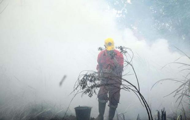 Walhi Tuding Pemerintah Gagal Tangani Kebakaran Hutan dan Lahan