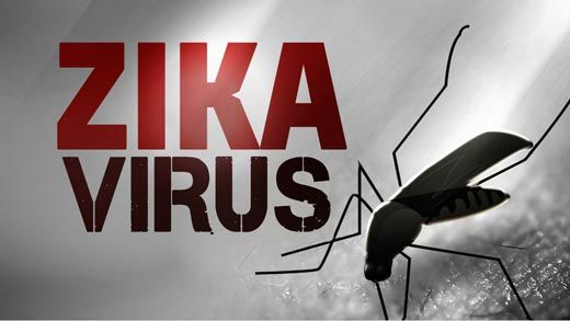 Ini Alasannya Mengapa Riau Paling Rentan Terinfeksi Virus Zika