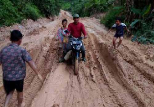 Warga Keluhkan Kerusakan Jalan Desa Tanjungairhitam Pelalawan yang Diduga akibat Dilalui Kendaraan Sawit PT Mekar Sari