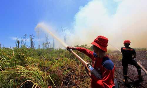 Warga 18 Desa di Riau Nyatakan Komitmen Tidak Membakar Hutan dan Lahan