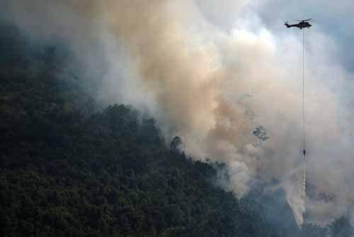 BMKG Deteksi 18 Titik Panas di Riau, Sumbar dan Sumut