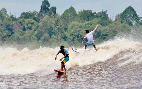 Mau Uji Nyali? Yuk Berselancar di Muara Sungai Kampar
