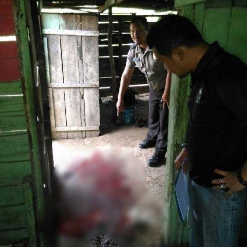 Polisi Masih Buru Pembacok Warga Duri hingga Tewas saat Duduk di Warung Kawasan Simpang Pemburu Rohil