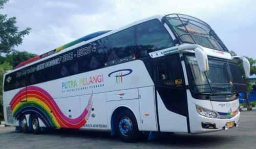 """Siap Angkut Pemudik di Sumatera, Deretan Bus Pasang """"Tameng"""" Khusus dari Besi untuk Melindungi dari Aksi Pelemparan di Jalur Sepi"""