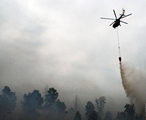 20 Hektar Lahan Gambut di Kecamatan Tanahputih Rokan Hilir Terbakar