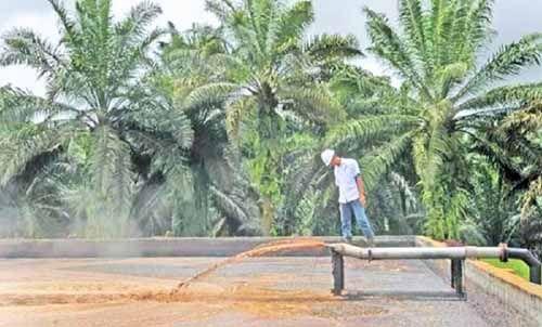 Menristek Dikti Sebut Riau Berpotensi Besar Jadi Produsen Energi Terbarukan