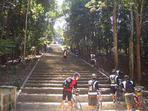 Menyusuri Pesona Wisata Alam di Taman Hutan Raya Sultan Syarif Hasyim Riau