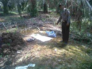 Feni Maranata Dikabarkan Hilang Misterius saat Memungut Brondolan Sawit di Batang Gangsal Inhu
