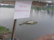 buaya-sering-muncul-di-sungai-kualo-rantaukopar-rohil-masyarakat-jadi-resah