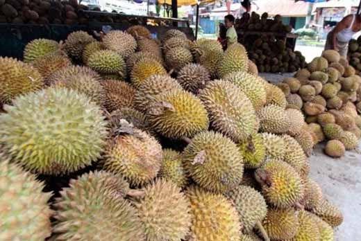 Panitia Pesta Durian di Gelanggang Olahraga Remaja Pekanbaru Minta Maaf dan Kembalikan Uang Peserta