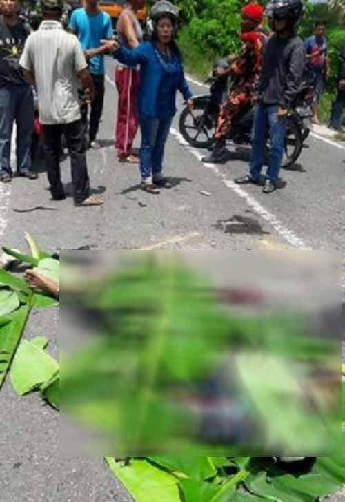 """Kecelakaan Maut di Jalur Rengat-Tembilahan, Sepeda Motor """"Laga Kambing"""" dengan Truk, Istri Tewas Suami Patah Leher dan Masih Koma"""