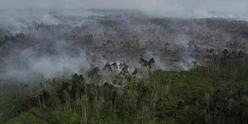 12 Titik Panas Terindikasi Karhutla Terdeteksi di Riau