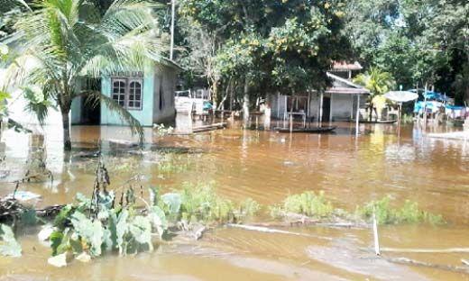 Sungai Nilo Meluap, Puluhan Rumah di Desa Lubukkembangbunga Ukui Pelalawan Terendam Banjir