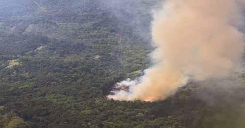 Hingga Triwulan Pertama 2017, Ada 335,95 Hektar Lahan di Riau yang Terbakar