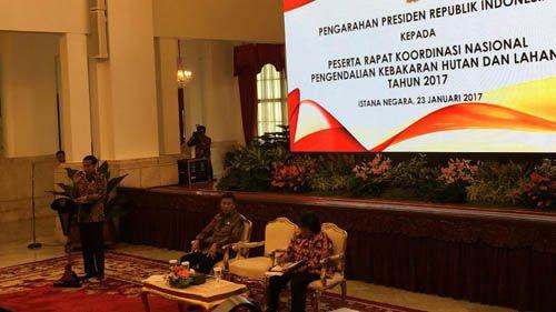 Kerugian akibat Kebakaran Hutan pada 2015 Tembus Rp220 Triliun, Presiden Jokowi Berharap Karhutla di 2017 Menurun Drastis