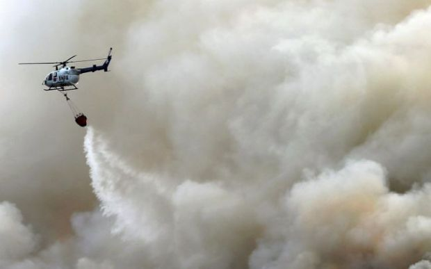 Pemkab Rokan Hilir Kewalahan Padamkan Kebakaran Lahan Gambut di Tanahputih dan Desa Momugo