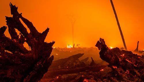 Selama 96 Hari ke Depan (24 Januari hingga 30 April 2017), Riau Berstatus Siaga Darurat Kebakaran Hutan dan Lahan