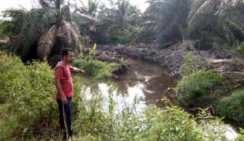 AMPKB Laporkan PT Adei Plantation ke DLH Pelalawan Terkait Dugaan Kecurangan Normalisasi Sungai Buluh