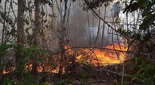 Kebakaran Lahan Pemkab Bengkalis di Jalan Batin Alam Gara-gara Puntung Rokok