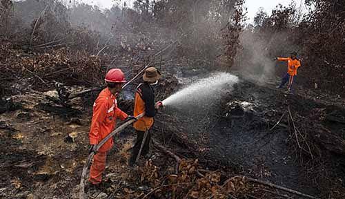 Tim Gabungan Terus Padamkan Kebakaran Lahan Milik Pemkab Bengkalis di Jalan Batin Alam