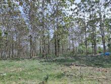 ketakutan-divaksin-covid19-warga-desa-jenar-jateng-ramairamai-kabur-ke-hutan