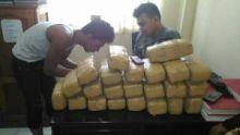 sempat-bohong-bilang-isinya-kerupuk-polisi-inhu-bekuk-pria-pembawa-26-kg-ganja-asal-aceh