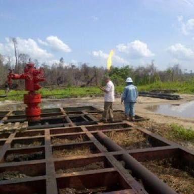 Masyarakat Kampung Kuala Gasib Kabupaten Siak Keluhkan Pembangunan PLTG Belum Direalisasikan