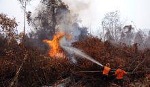 polda-riau-tetapkan-58-tersangka-pembakar-lahan-1-orang-petinggi-perusahaan