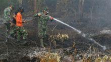 siapa-aktor-di-balik-pembakaran-hutan-dan-lahan
