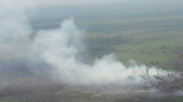 Hujan Lebat Padamkan Kebakaran Ratusan Hektar Lahan Gambut di Tanahputih dan Desa Momugo Kabupaten Rokan Hilir
