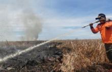 lima-hari-berlalu-kebakaran-hutan-dan-lahan-di-rokan-hilir-belum-padam