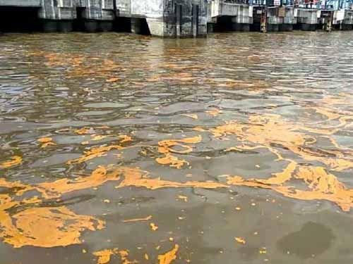 Polisi Selidiki Tumpahan Minyak Sawit Milik PT Nagamas yang Mencemari Laut Dumai