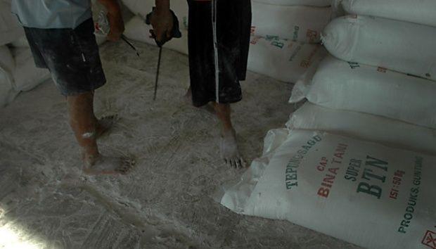 Kurangi Konsusmsi Beras, Riau Targetkan 25 Persen Bahan Makanan Pokok Beralih ke Sagu