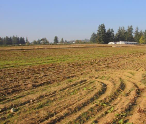 Sebidang Tanah di Kabupaten Siak Milik Orang Dekat Bupati Labuhanbatu Sumut Dilelang KPK