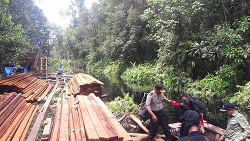 Polda Riau Bekuk Pelaku yang Meluluhlantakkan Cagar Biosfer Giam Siakkecil-Bukitbatu Kabupaten Bengkalis