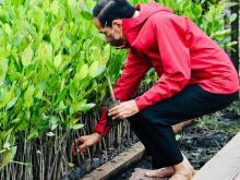 34000-hektar-mangrove-di-seluruh-indonesia-akan-direhabilitasi