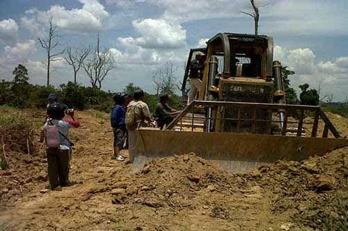 Buka Lahan Perkebunan tanpa Izin, PT Adei Plantation and Industry Dihukum Denda Rp1,5 Miliar