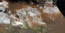 sungai-di-desa-tuapelang-indragiri-hulu-diduga-tercemar-limbah-pabrik-pt-sir