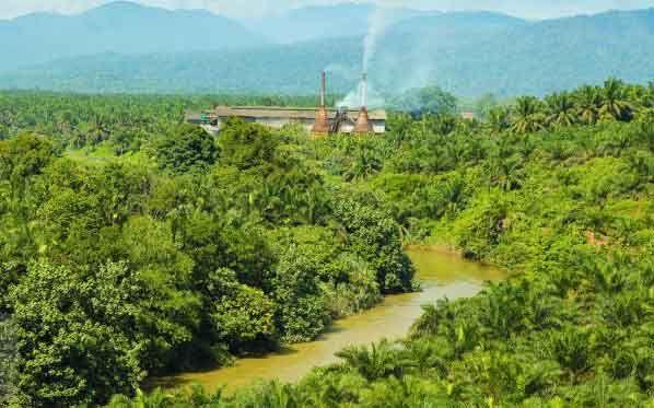 Riau-Malaysia Bangun Zona <i>Green CPO</i> di Kawasan Industri Dumai
