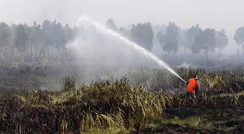 Bertugas Saat Hari Raya Idul Fitri, Satgas Karhutla Riau: Tak Ada Tanggal Merah untuk Kami