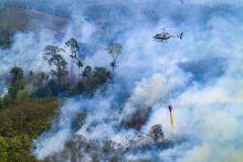 kerugian-akibat-kebakaran-hutan-dan-lahan-sepanjang-2019-capai-rp75-triliun